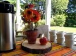 Tree slice risers for party decor