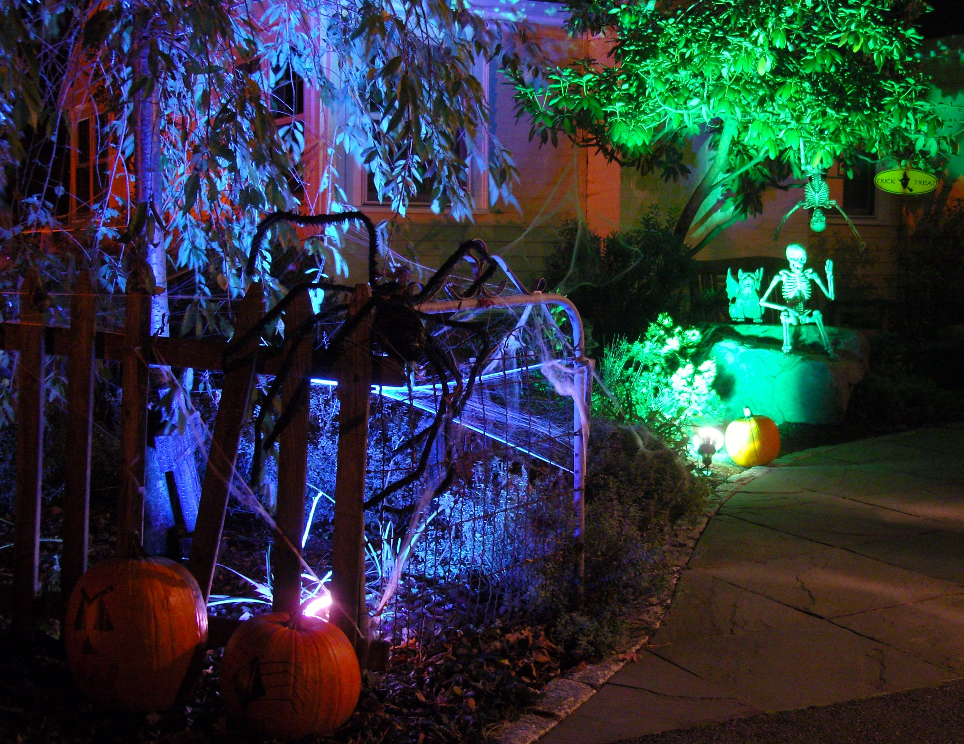 miss party has personally amassed a large collection of halloween decor - When To Start Decorating For Halloween