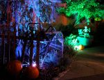 Miss Party's Haunted House Walkway